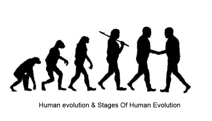 attempting to explain when the evolution of humanity all started Some people feel that all the animals and plants appeared simultaneously on earth, while the scientific community pushes back explaining the long and complex process of natural selection and evolution.
