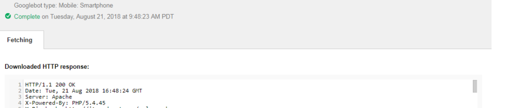 Google bot fetch and render option