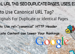 Canonical URL Tag- SEO Duplicate Pages, Uses, Examples, Tags