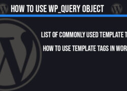 how-to-use-wp-query-object-in-wordpress