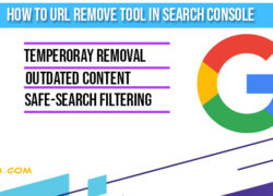 how-to-remove-url-tool-insearchconsole