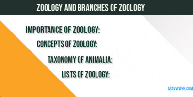 zoology-branches-of-zoology-animalia