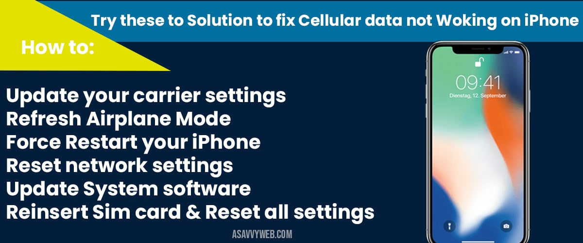 Cellular Data Not Working On Iphone A Savvy Web