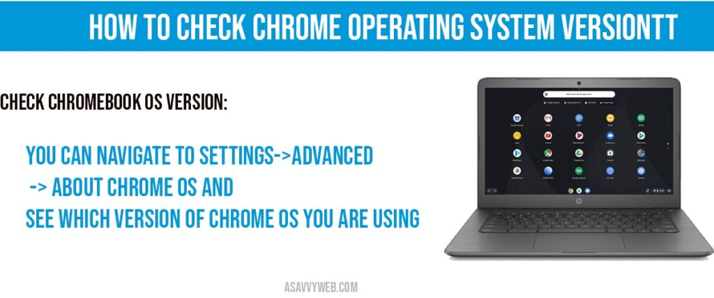 How to check chrome operating system Version