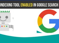 request indexing tool enabled in google search console