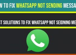 whatsapp not sending messages