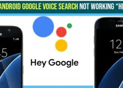 Google Voice Search Not working