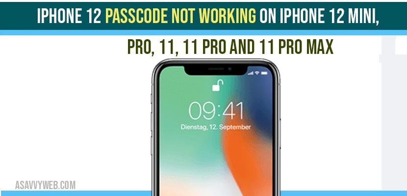 iPhone 12 Passcode not Working