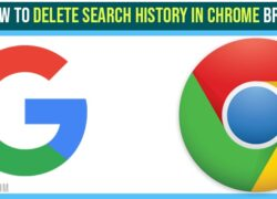 Delete search history in chrome Browser