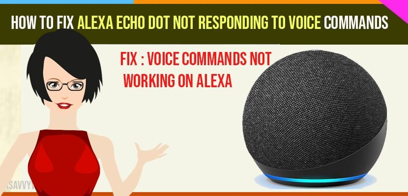 How to fix Alexa echo dot not responding to voice commands