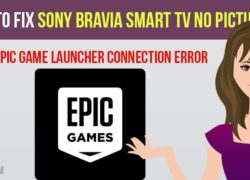 How to Fix Epic Game launcher Fornite Connection Error | Offline Mode