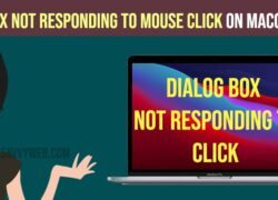 Dialog box not responding to mouse click on MacOS big Sur