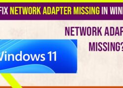 How to Fix Network Adapter Missing in Windows 11