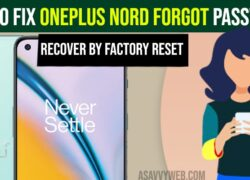 How to Fix OnePlus Nord Forgot Password | Recover by Factory Reset